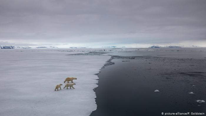 Hay que volver a decirlo: peligro, ¡biodiversidad amenazada!