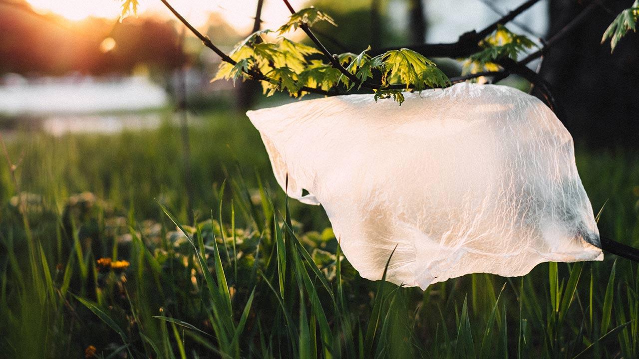 Industriales proponen reutilizar plásticos para evitar prohibición