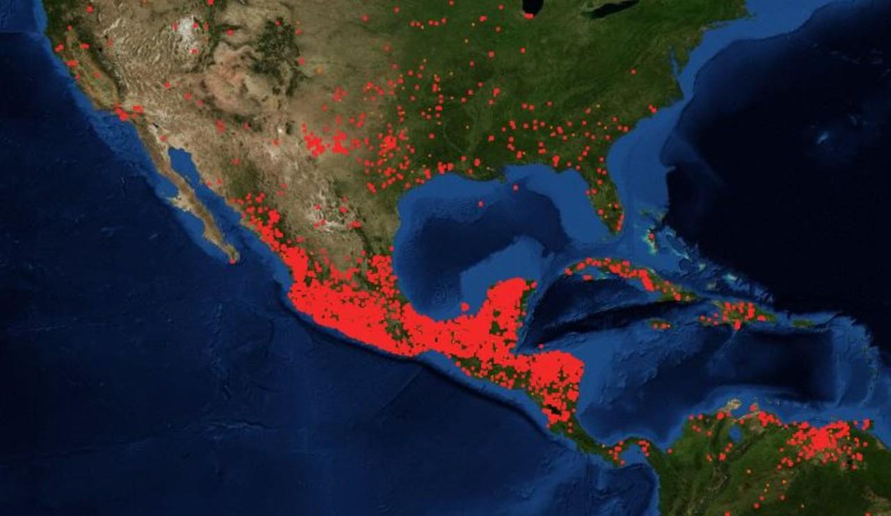 Así se ven los incendios forestales en México, de acuerdo con satélites de la NASA