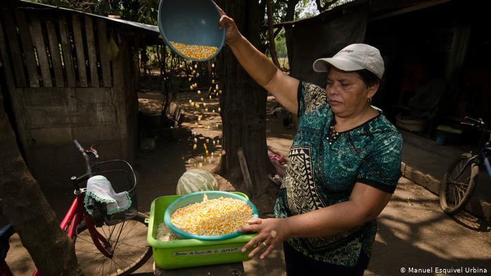 En un clima extremo, pequeños agricultores de Nicaragua ven el futuro con preocupación