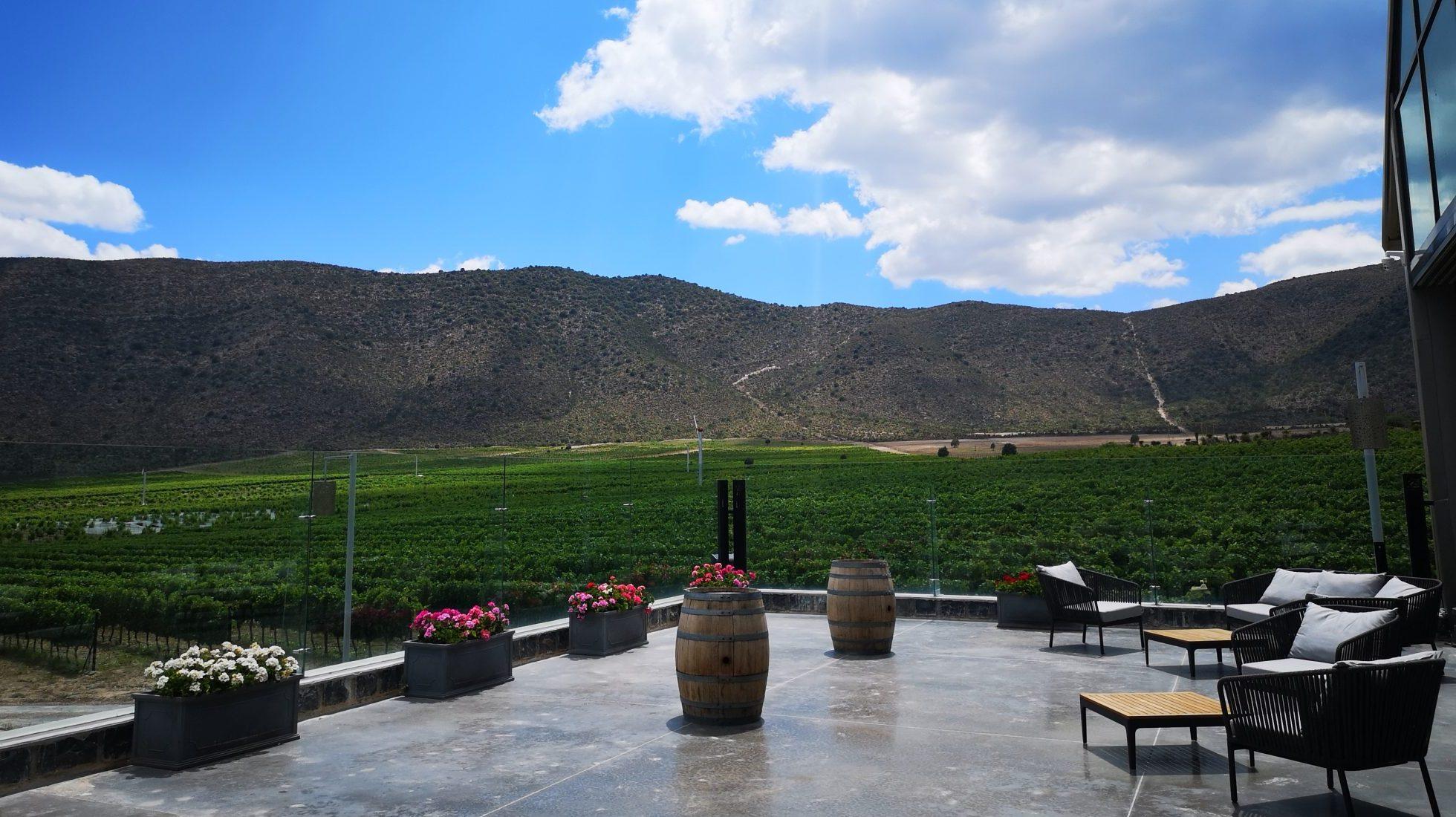 Atrévete a conocer Parras, el Pueblo Mágico para los apasionados del vino