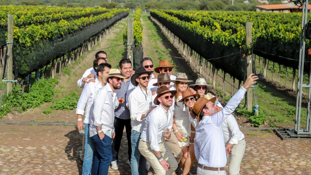 Azafrán: paellas, vino y vendimia en San Miguel de Allende