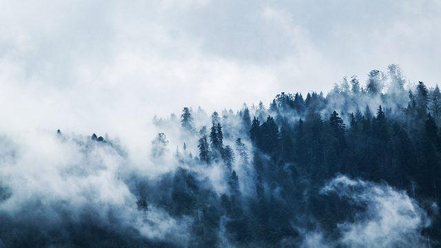 Frente frío