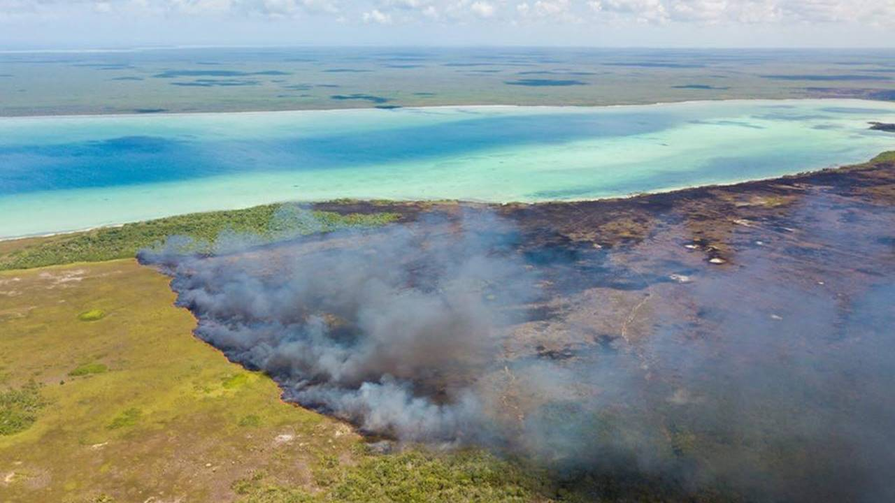 Incendios consumen más de 600 hectáreas en reserva de Sian Ka'an