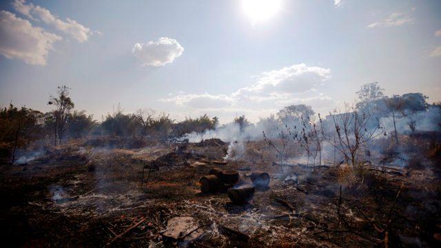 El mundo busca cómo proteger la Amazonía ante trágico incendio