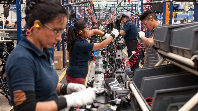 actividad económica trabajo