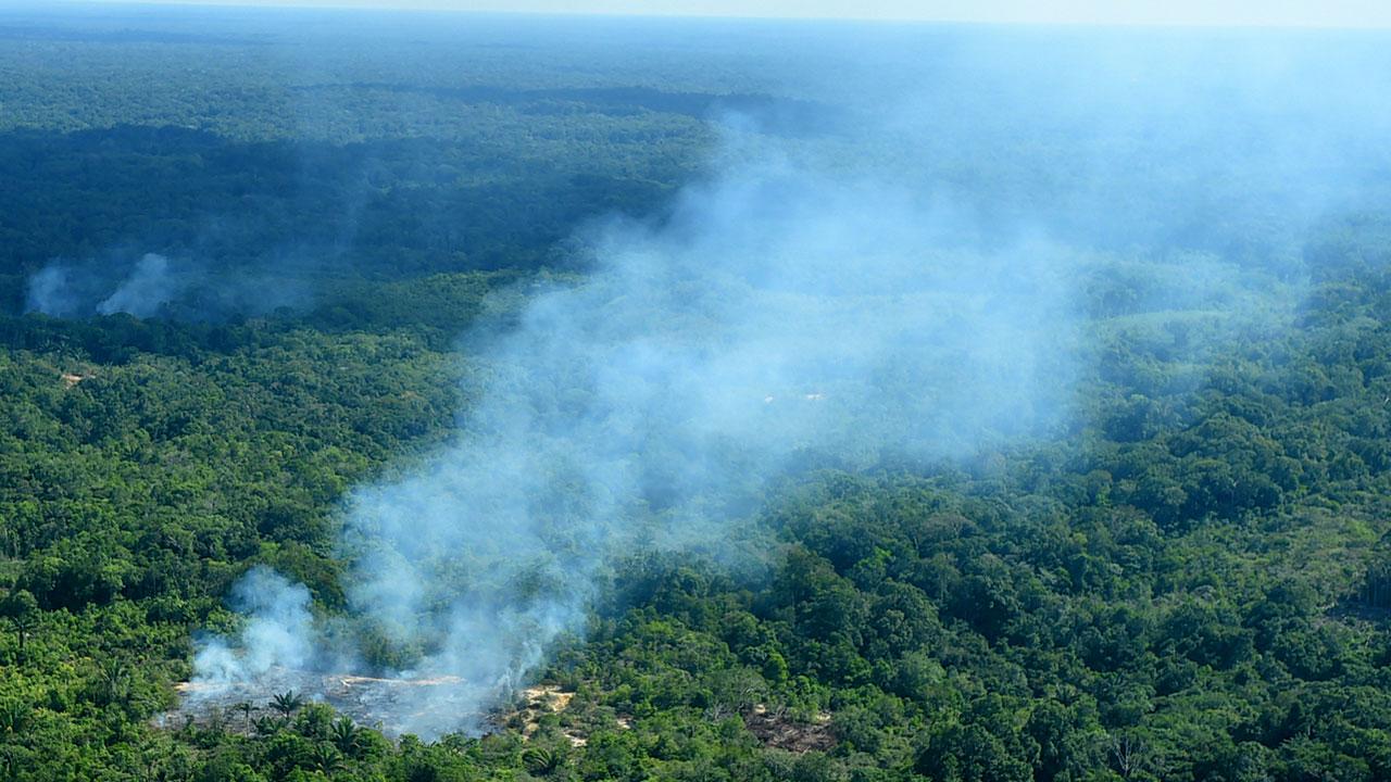 Brasil dejará de combatir la deforestación en el Amazonas