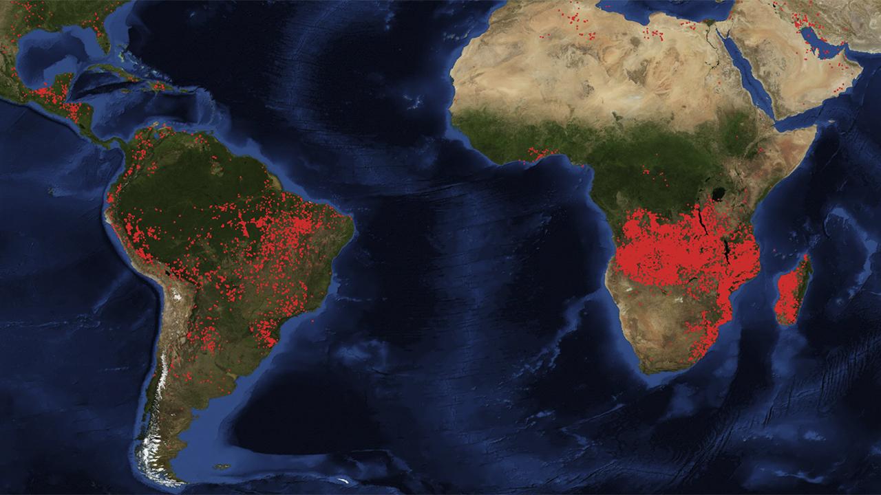 No sólo arde el Amazonas: estas regiones del mundo también están en llamas