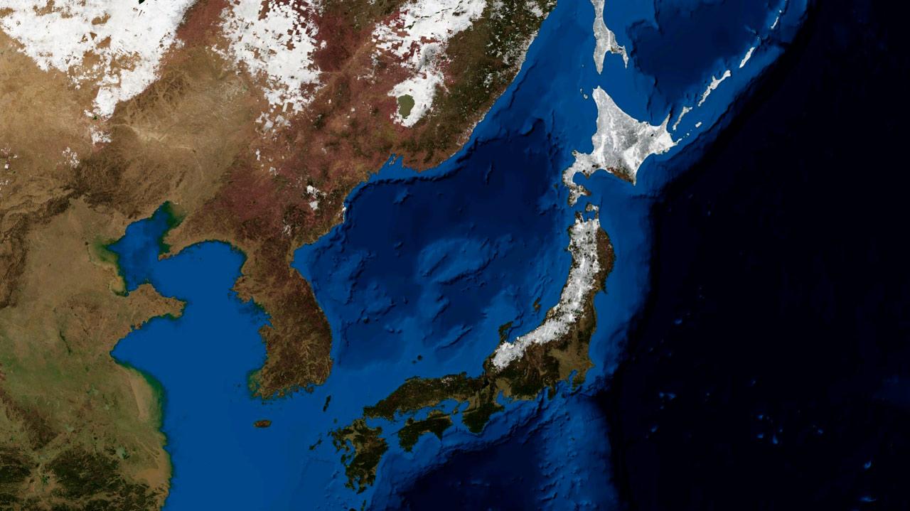 Crean en Japón app que adelanta el daño que sufrirá un edificio por un sismo