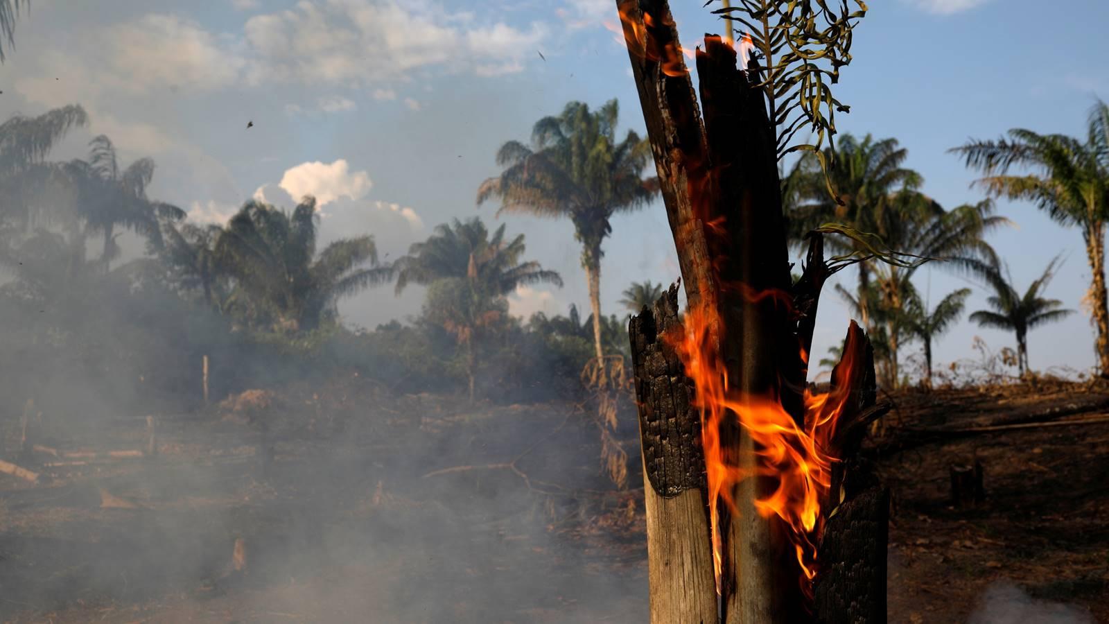 EU no estuvo de acuerdo con iniciativa de ayuda del G-7 para el Amazonas
