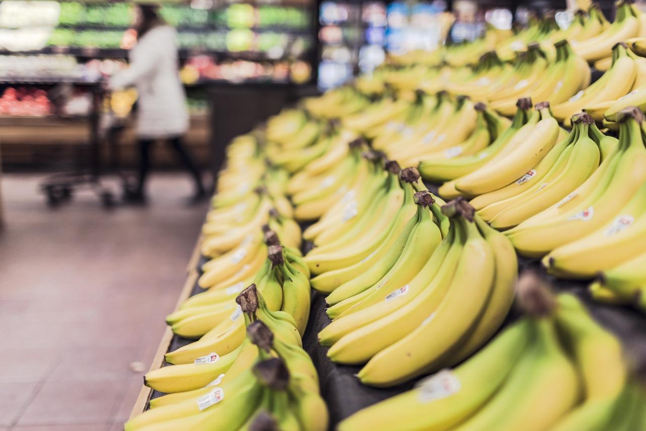 El mal del plátano: un hongo muestra los límites del monocultivo