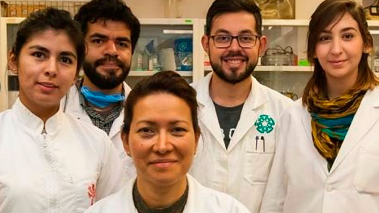 Investigadores del IPN logran eliminar virus del papiloma humano