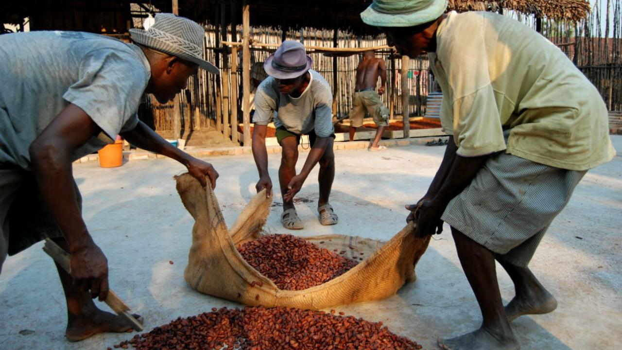 África: un socio comercial que se debe potenciar