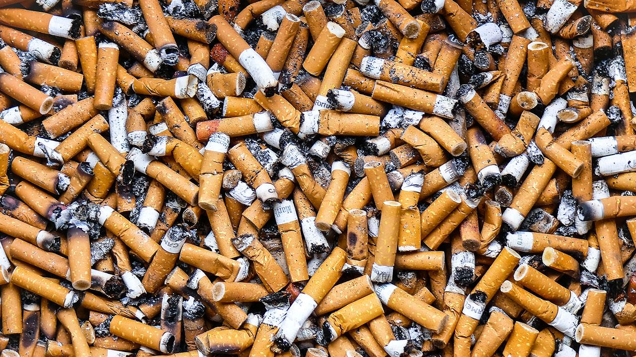 Sancionarán en Querétaro a quien tire colillas de cigarro en la calle