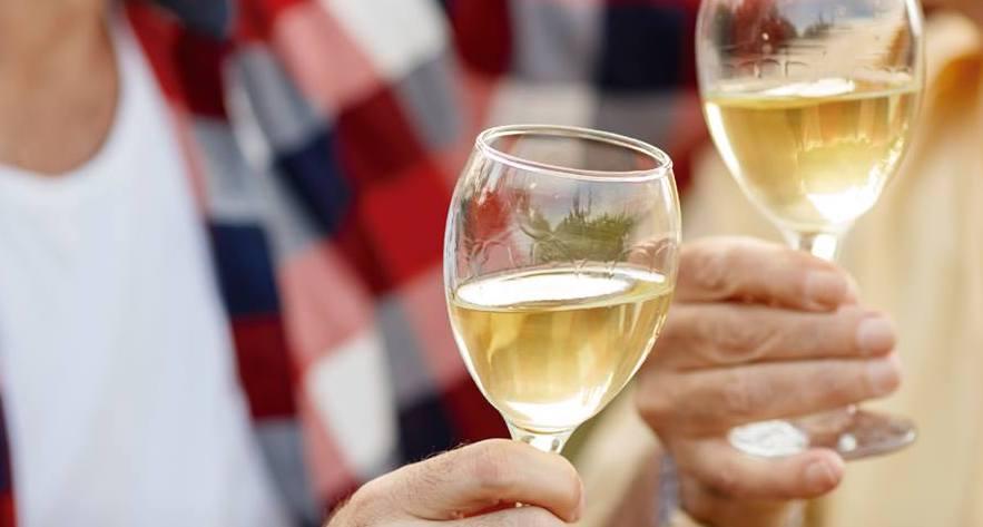 Querétaro prepara su primer Festival del Vino