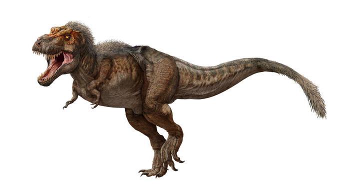 T-Rex-Exposición