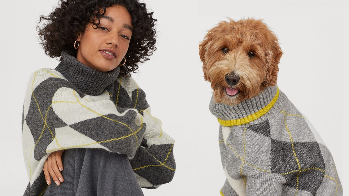 H&M x Pringle Of Scotland: Una colección para ti y tu mascota