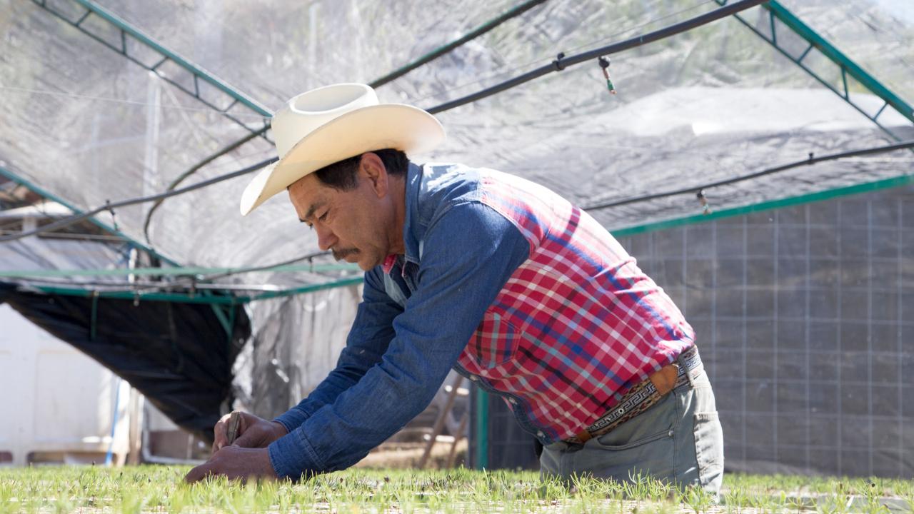Llaves de agua para todo México