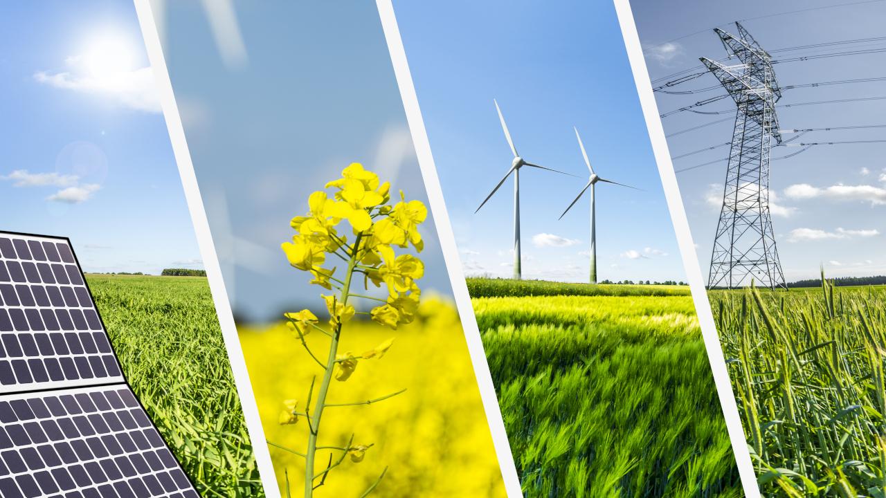 Siemens México, el legado luminoso de un futuro sostenible