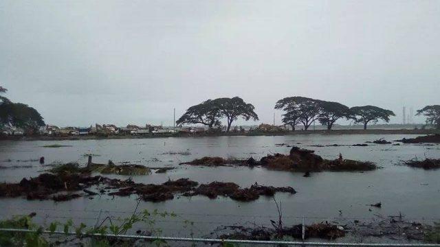 Pemex Dos Bocas