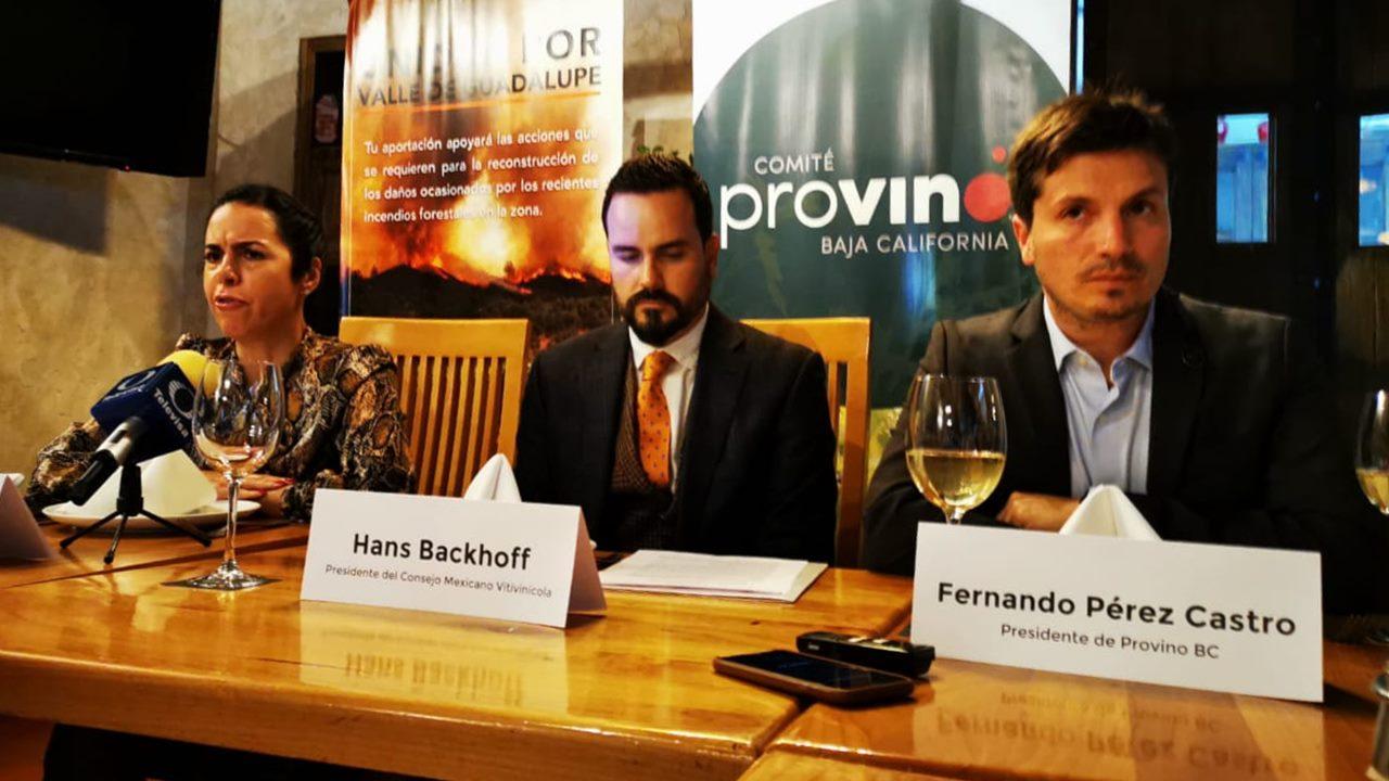 Productores de vino buscan 1 mdp para daños por incendios en BC