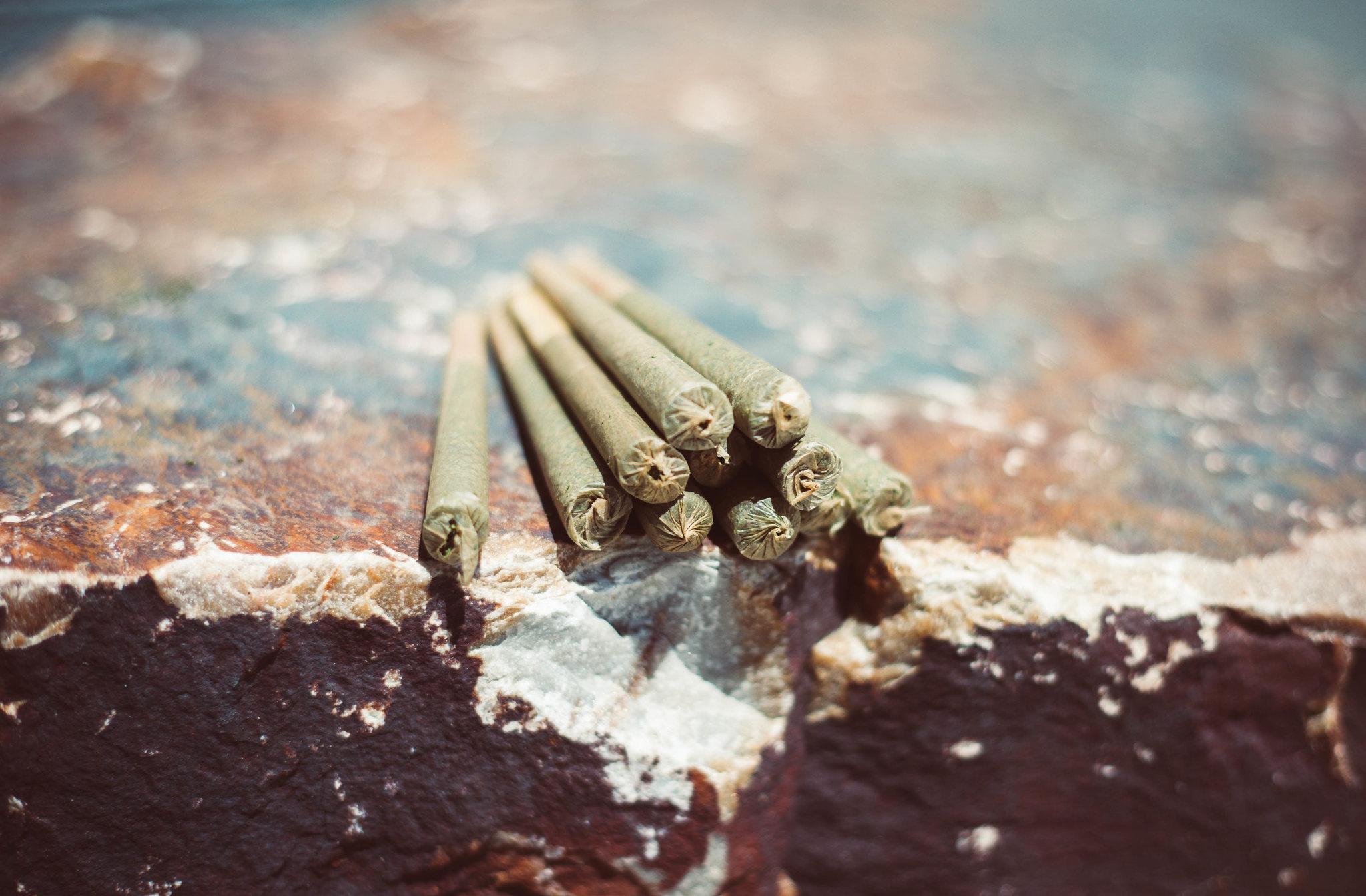 """Cannabis: """"una sustancia para adultos"""""""