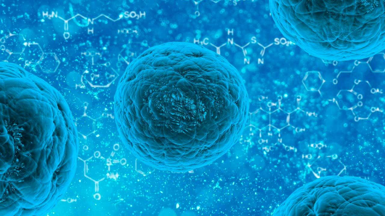 UNAM diseña partículas que funcionan como vacuna contra el cáncer