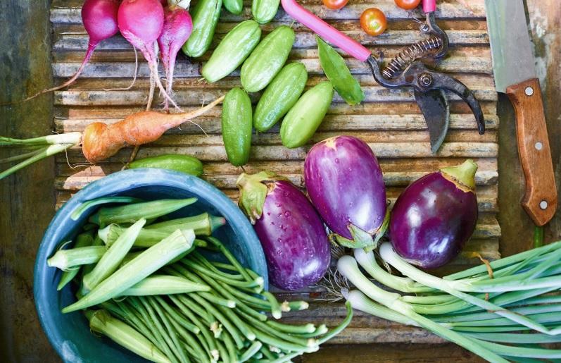 Casi 20 millones más de personas vivieron crisis alimentarias en 2020