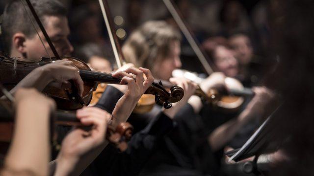 'Transforma la música en amor',