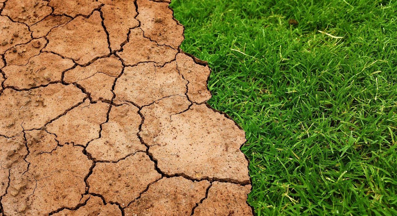 Los países más pobres podrían exigir financiación climática: Greenpeace