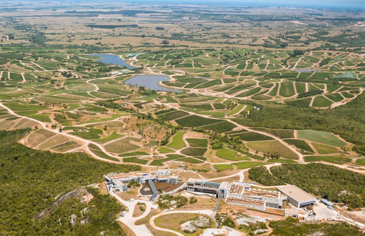 Bodega Garzón Uruguay enoturismo
