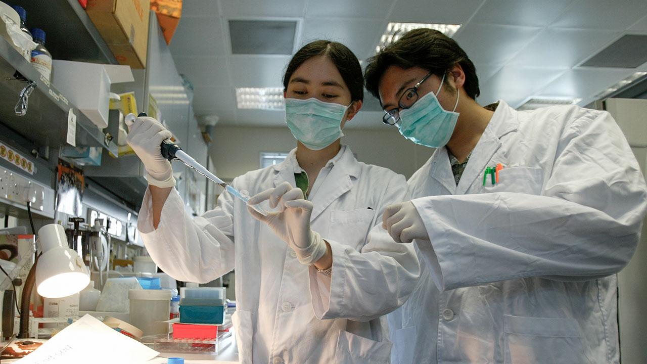 Estas son las farmacéuticas que trabajan para detectar y combatir el coronavirus