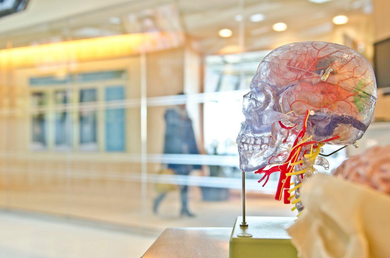 Covid-19 puede causar daños cerebrales incluso en pacientes recuperados: estudio