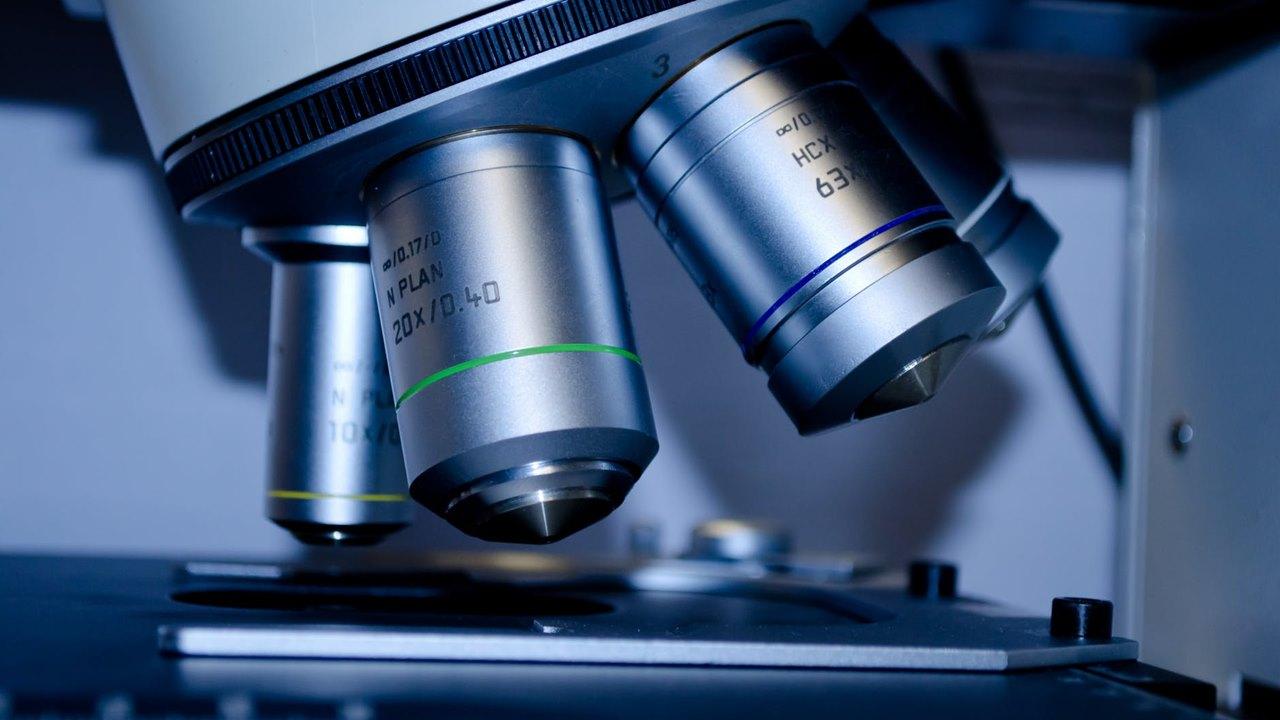 Científicos del IPN buscan prevenir cáncer gástrico a través de análisis de bacteria