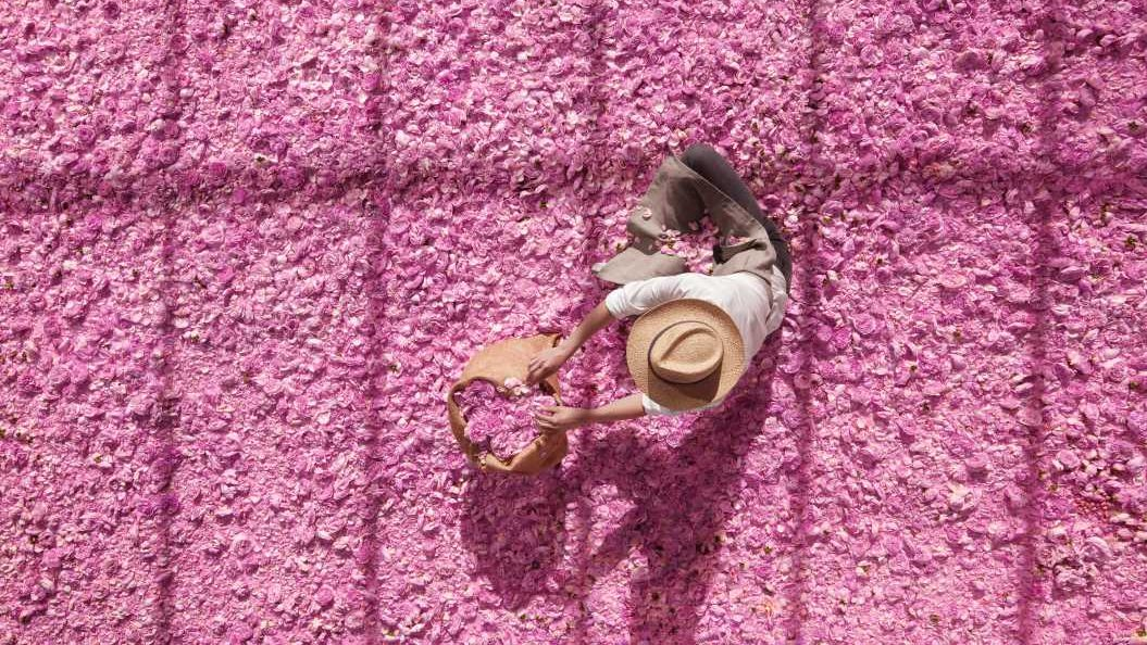 Miss Dior Rose N' Roses, obsesión total por la rosa