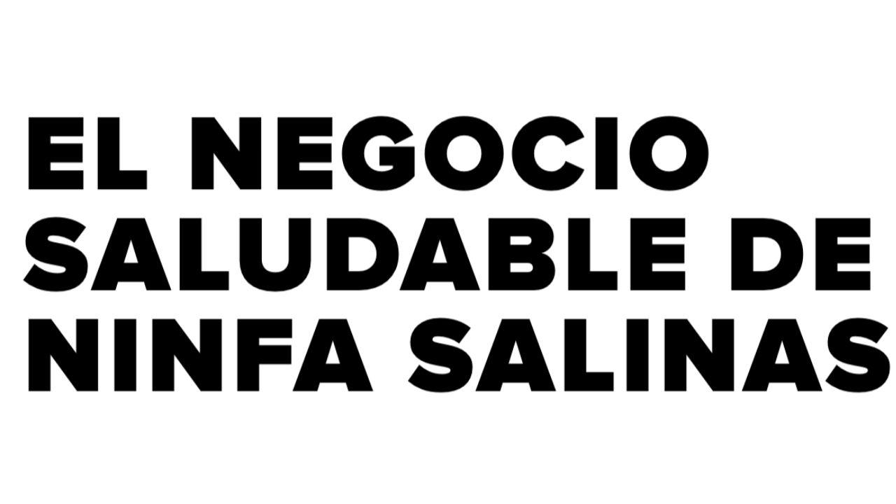 Ninfa Salinas Negocio saludable