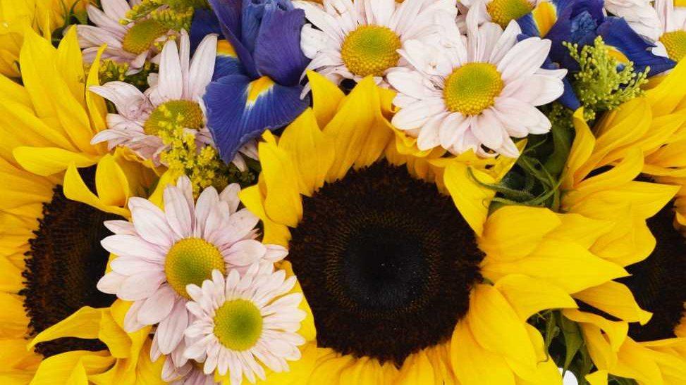 Flores en tu hogar