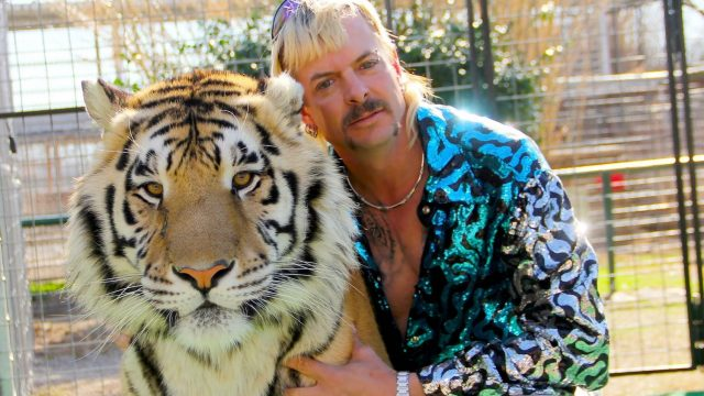 Tiger king Netflix docuserie criminal