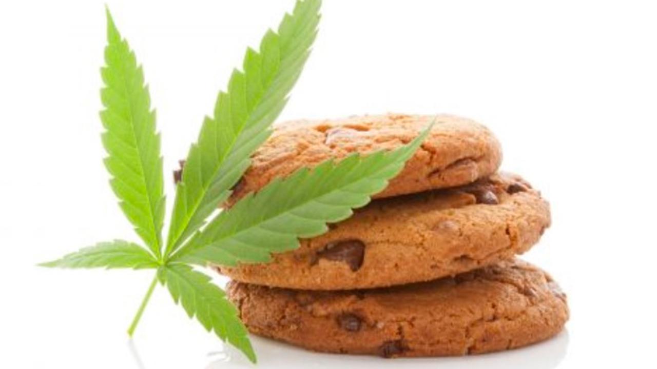 Así puedes obtener un amparo para consumir mariguana con fines lúdicos