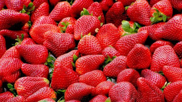 fresas banco