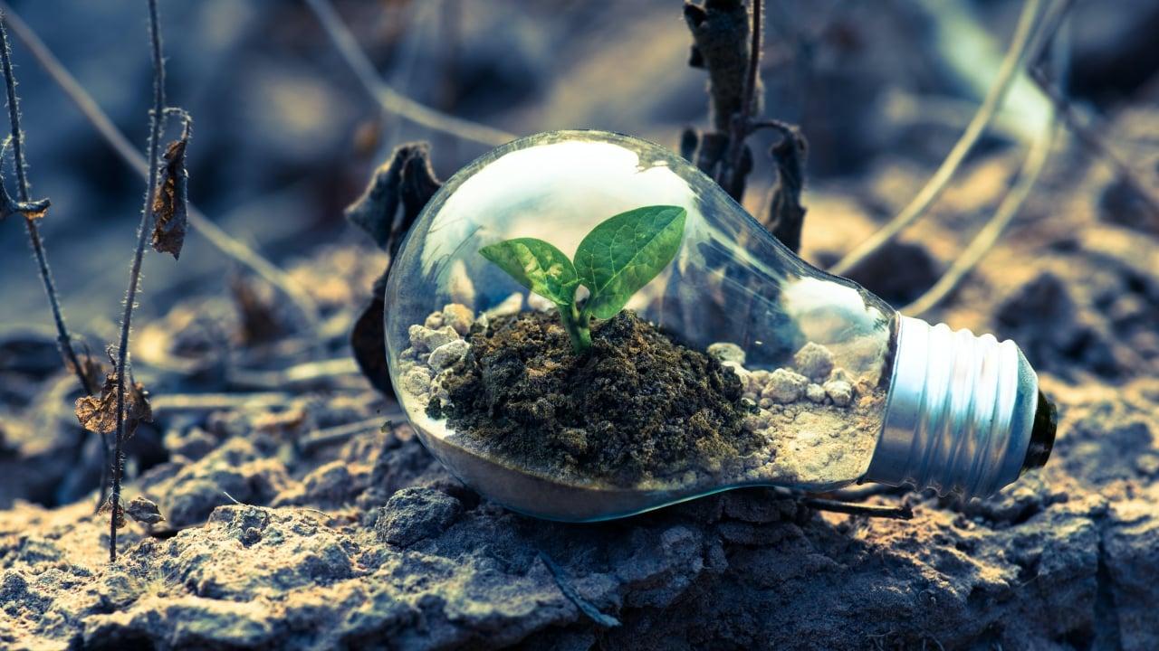 ONGs reclaman atención a emergencia climática en Presupuesto 2021