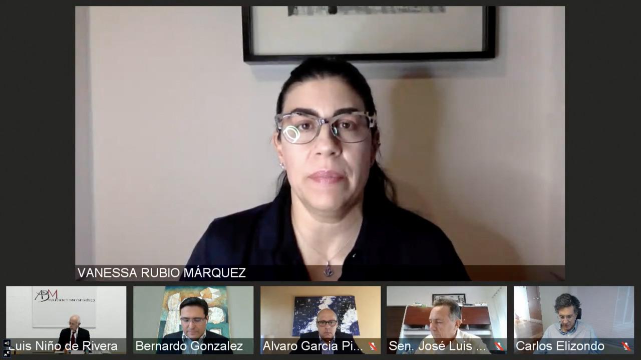Vanessa Rubio solicita licencia en el Senado; se retira de la política