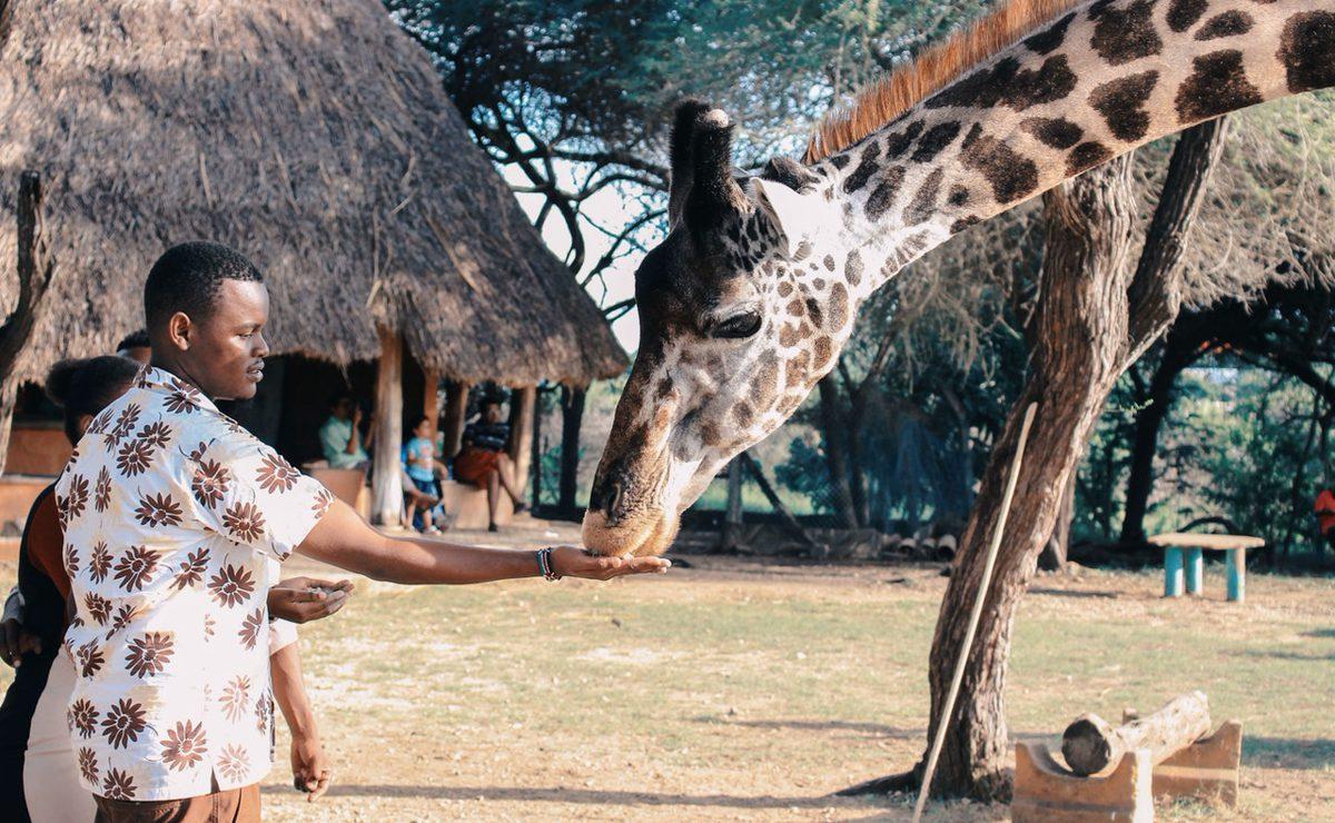 Zoológico pide donativos para alimentar animales; cerró por coronavirus