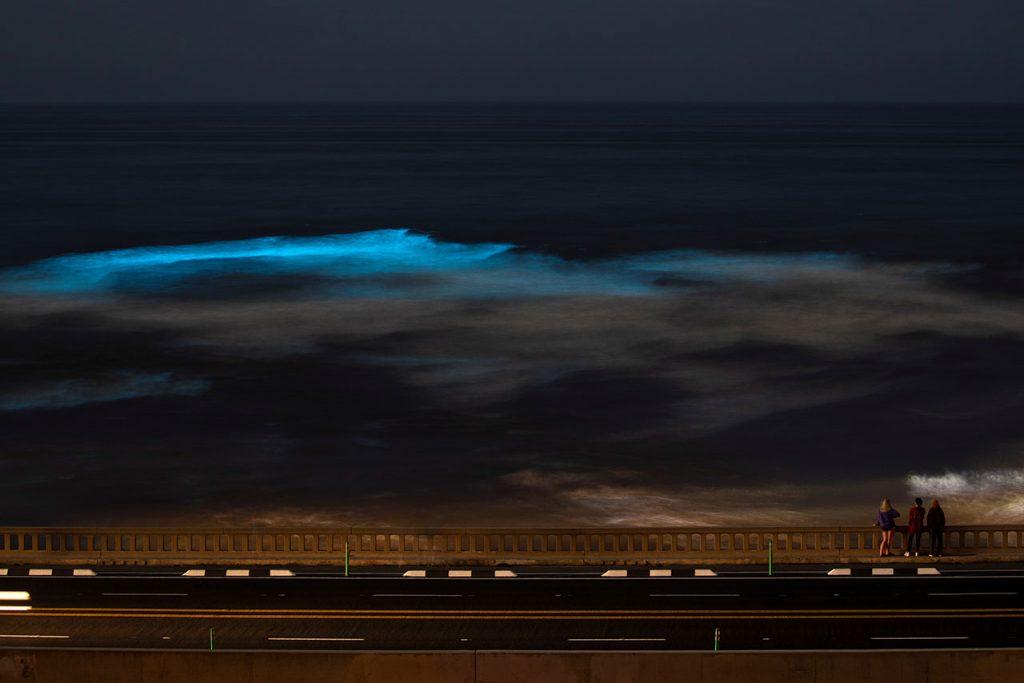 Bioluminiscencia in the ocean during the outbreak of the coronavirus disease (COVID-19) in California