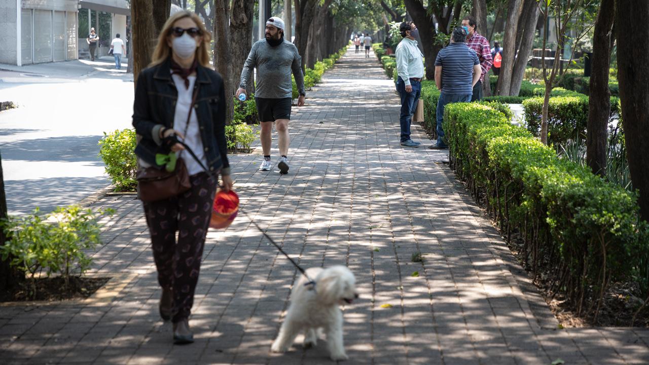 López-Gatell pide estar atentos a semáforo de Covid-19: 'puede reemerger la epidemia'