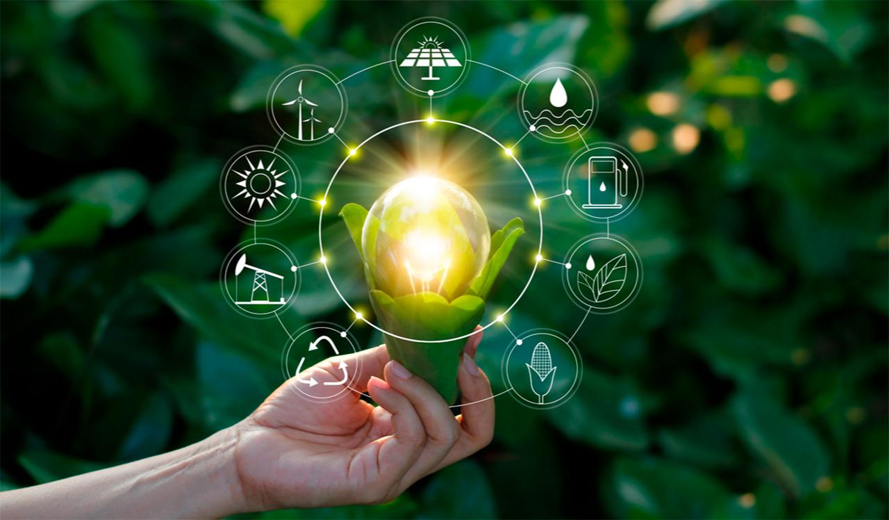 Es posible una recuperación sustentable a través de la Transformación Digital