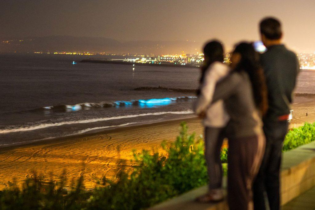 Bioluminiscencia waves glow off Redondo Beach, California