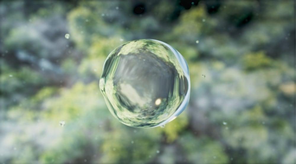 La gota de agua que busca proteger al bosque de Puebla