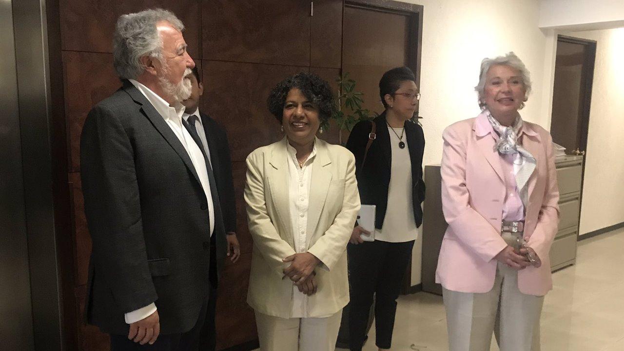 Candelaria Ochoa renuncia como titular del Conavim