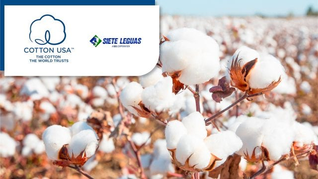 US COTTON,